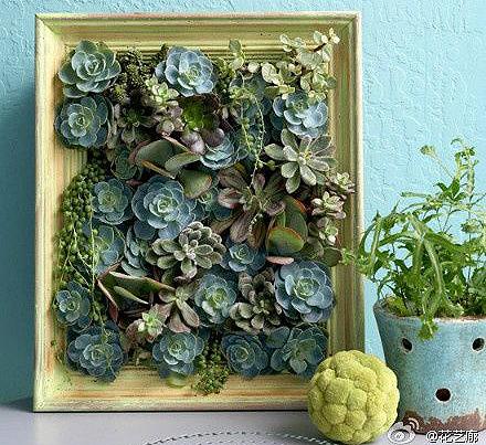 floraler bastel tipp ein sukkulenten bild schaffenszeit. Black Bedroom Furniture Sets. Home Design Ideas