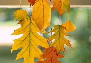Herbstlicher Fensterschmuck aus Wachsblättern